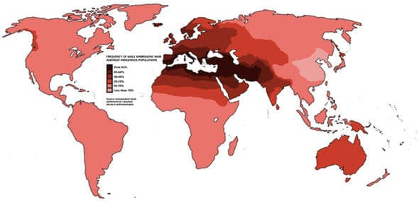 Calvicie Mundial por zonas